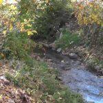Поддршка од ДОМ за референдум за Мала Река